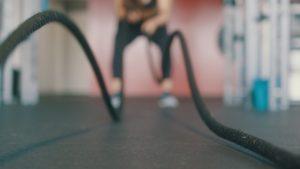blog training vet verbranding